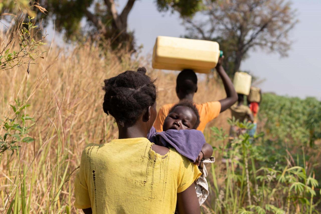 Aubergine Obojil Field Image